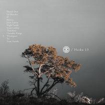 Haiku 13 cover art