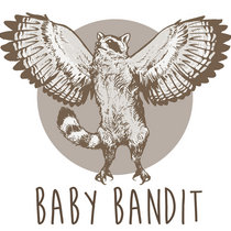 Baby Bandit cover art
