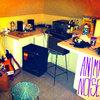 Anima Noise: 4-Track Recordings Cover Art