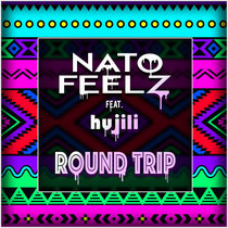 Round Trip ft. hujili cover art