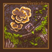 Versicolor cover art