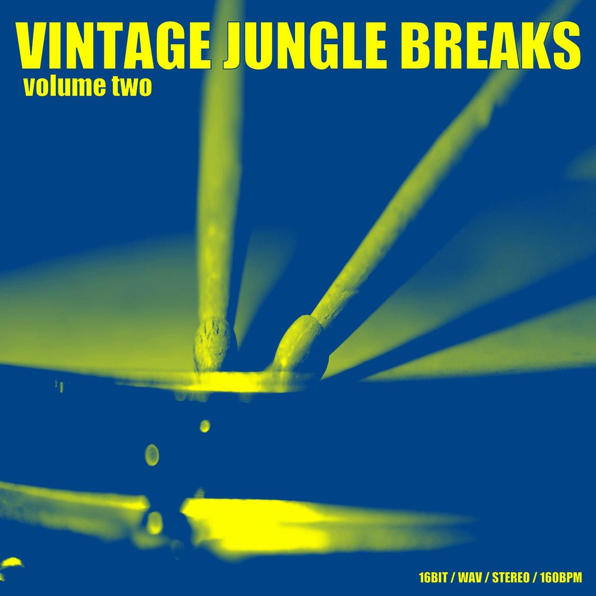 Vintage Jungle Breaks 2 | 6Blocc