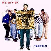 Jimbrowski (40 Acres Remix) cover art