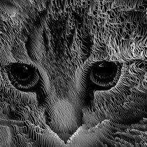 Cozy Cat cover art