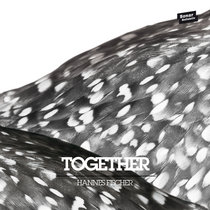 Together w / Remixes by Mat.Joe & Clap!Clap! cover art
