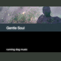 Gentle Soul cover art
