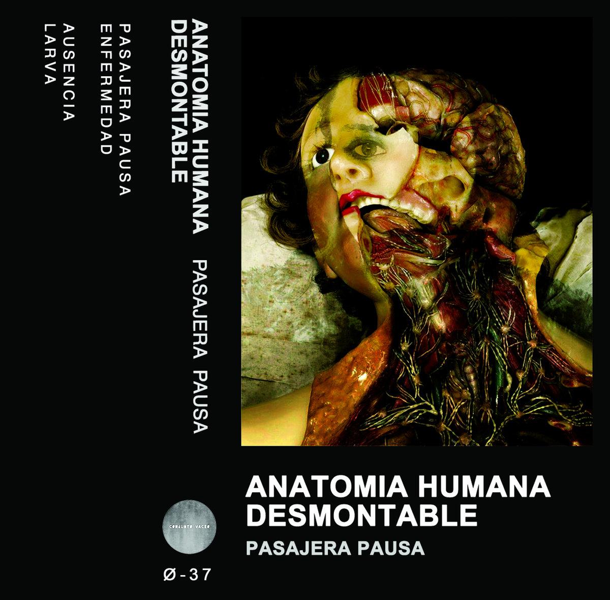 Enfermedad | Anatomia Humana Desmontable