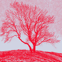 Baum EP cover art