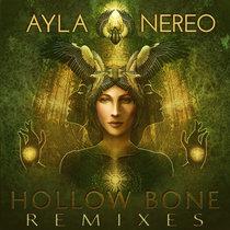 Hollow Bone (The Remixes) cover art