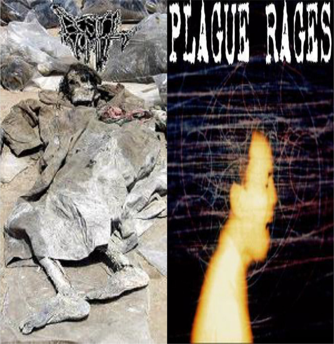 AT WAR WITH RAGE. from split cd w/ PLAGUE RAGES by from LO-FI RECORDS