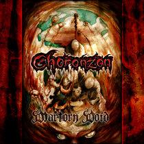 Wartorn Void cover art