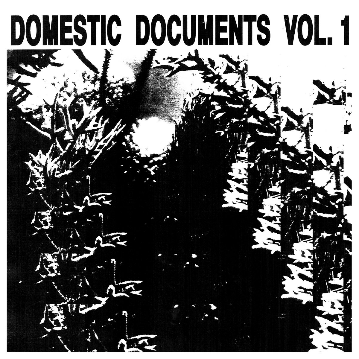 Various Artists - Domestic Documents Vol. 1 (Domestic Documents)