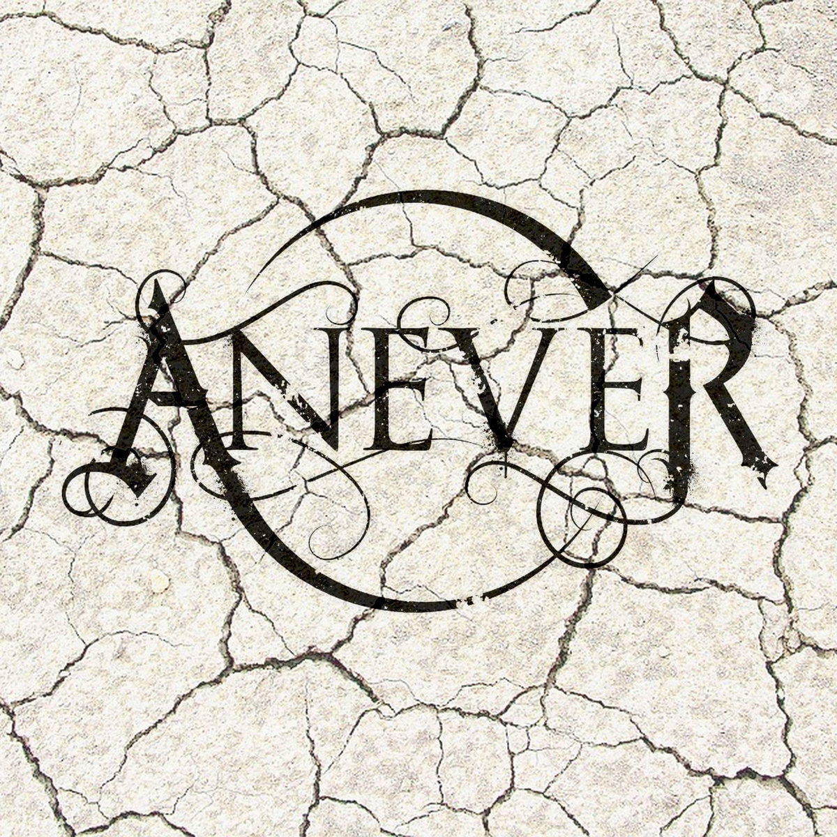 www.facebook.com/aneverband