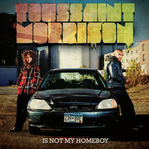 Toussaint Morrison Is Not My Homeboy cover art