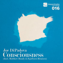 Consciousness (Incl. Matthew Bandy & Jojoflores Rmxs) cover art