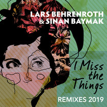 I Miss The Things (Remixes 2019) cover art