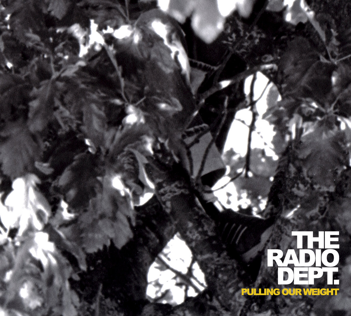 the radio dept discography download