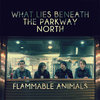 What Lies Beneath The Parkway North Cover Art