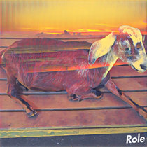 sheep cover art