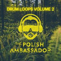 Drum Loops Volume 2 cover art
