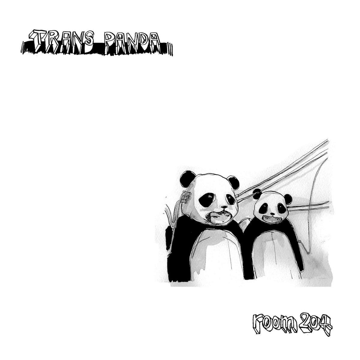 Панда транс