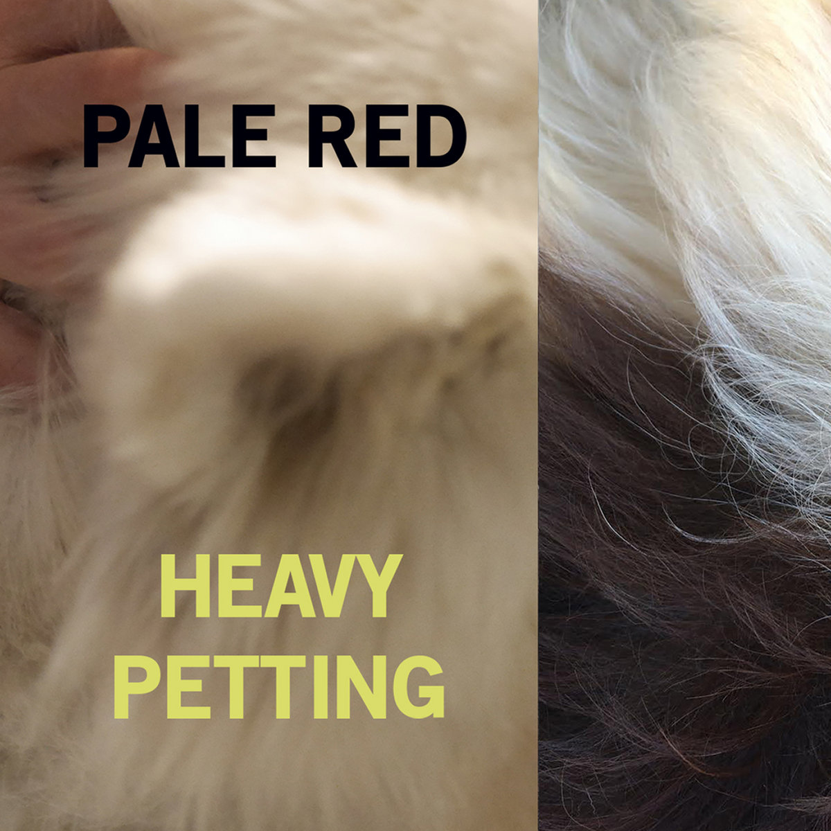 heavy petting pale red