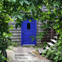 the blue door cover art