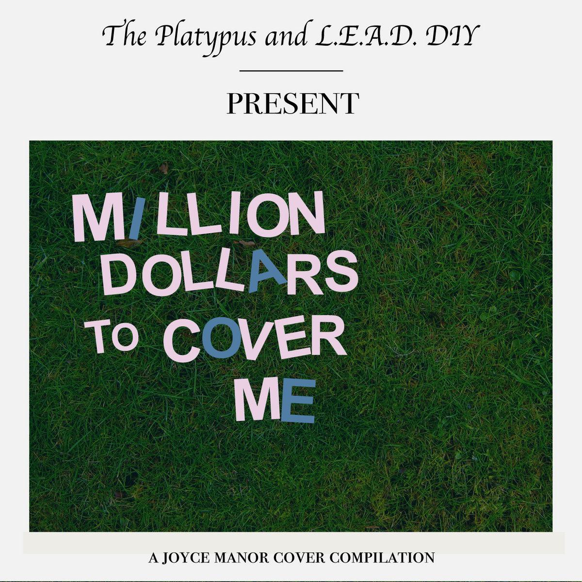 Million Dollars to Cover Me | L.E.A.D. DIY