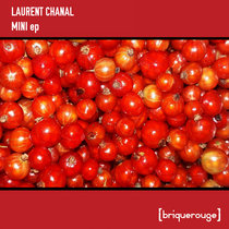 [BR155] : Laurent Chanal - Mini ep - incl. remixes from Xaric & David Duriez cover art