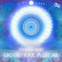 Spoken Bird - Liquid Soul Mantra cover art