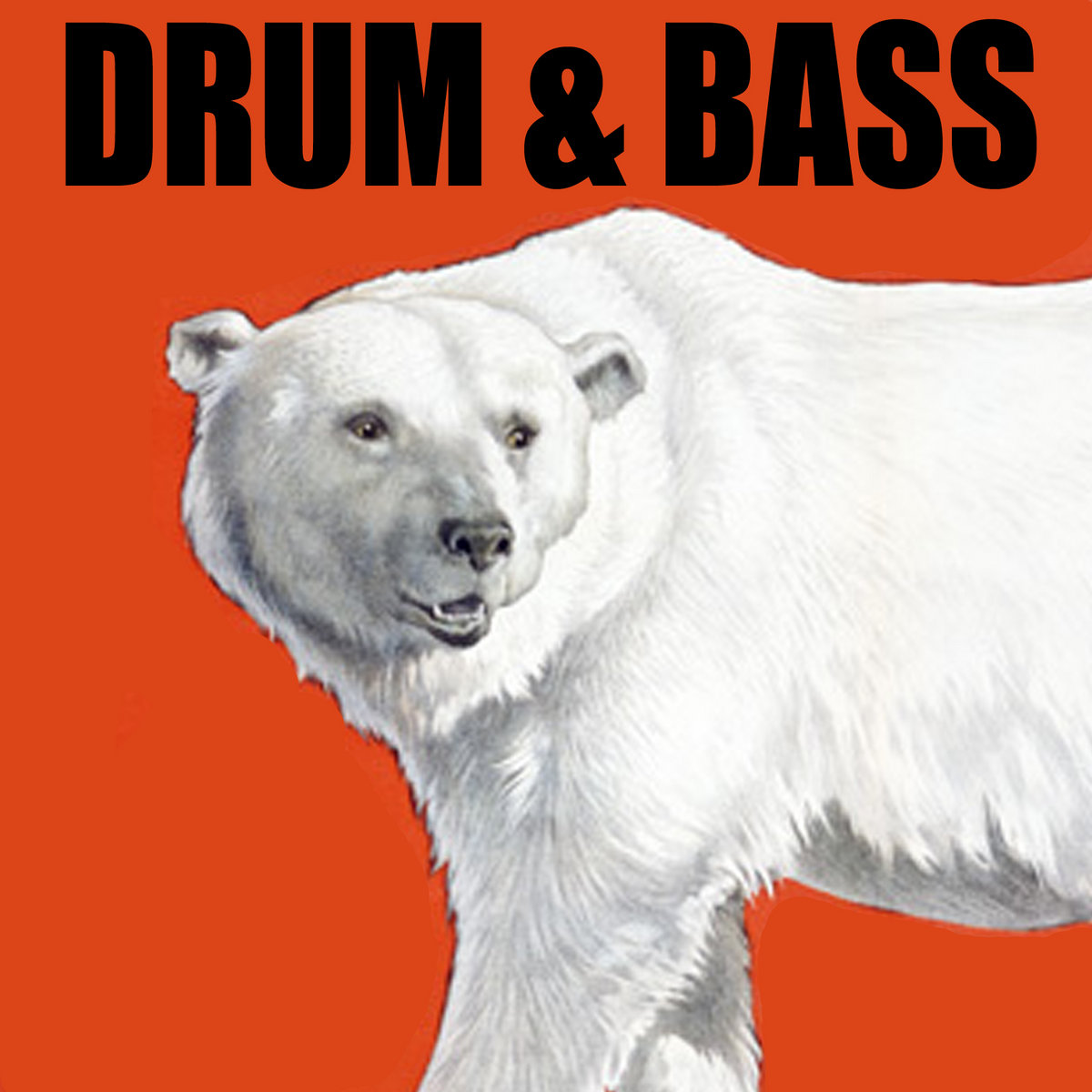 Drum & Bass | Sly Productions