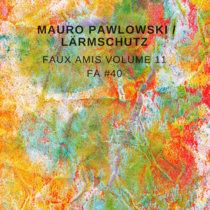 Faux Amis vol. 11: Mauro Pawlowski [FA#40] cover art