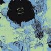 Ekphrasis Cover Art