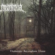 Vividarium Intervigilium Viator cover art