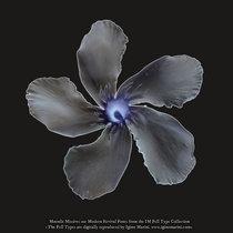Moonlit Missive #46 cover art