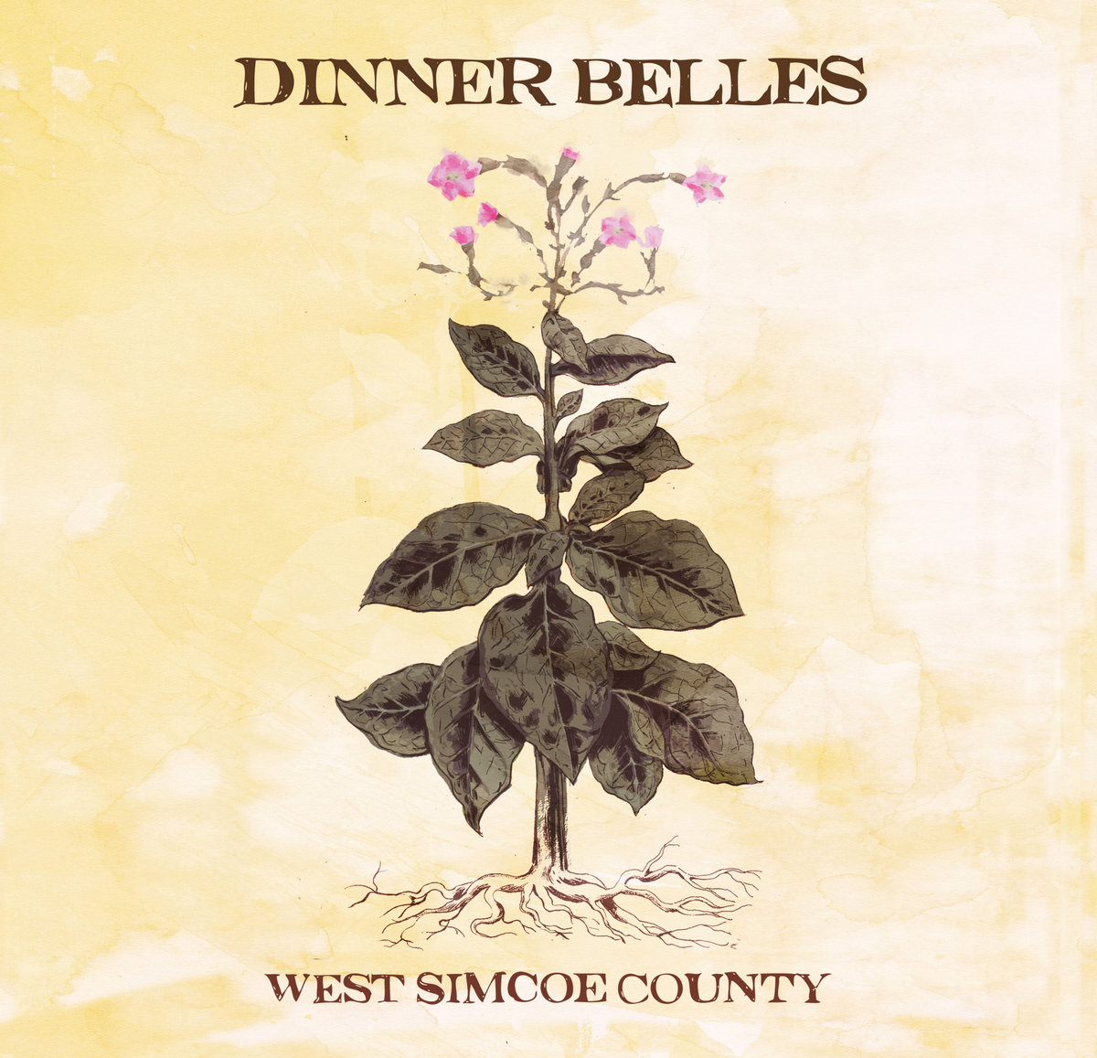west simcoe county dinner belles