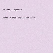 Neither Nightingale Nor Lark cover art