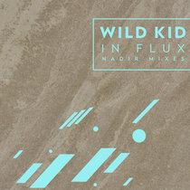 In Flux : Nadir Mixes cover art
