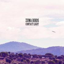 Contact Light by Zuma Birds