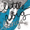 Little Big Bangs Cover Art