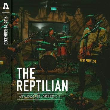 The Reptilian - Audiotree Live main photo