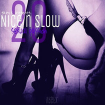 Nice & Slow 20 (Sexual Passion) cover art