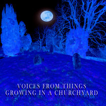 Voices from Things Growing in a Churchyard cover art