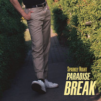 Paradise Break cover art