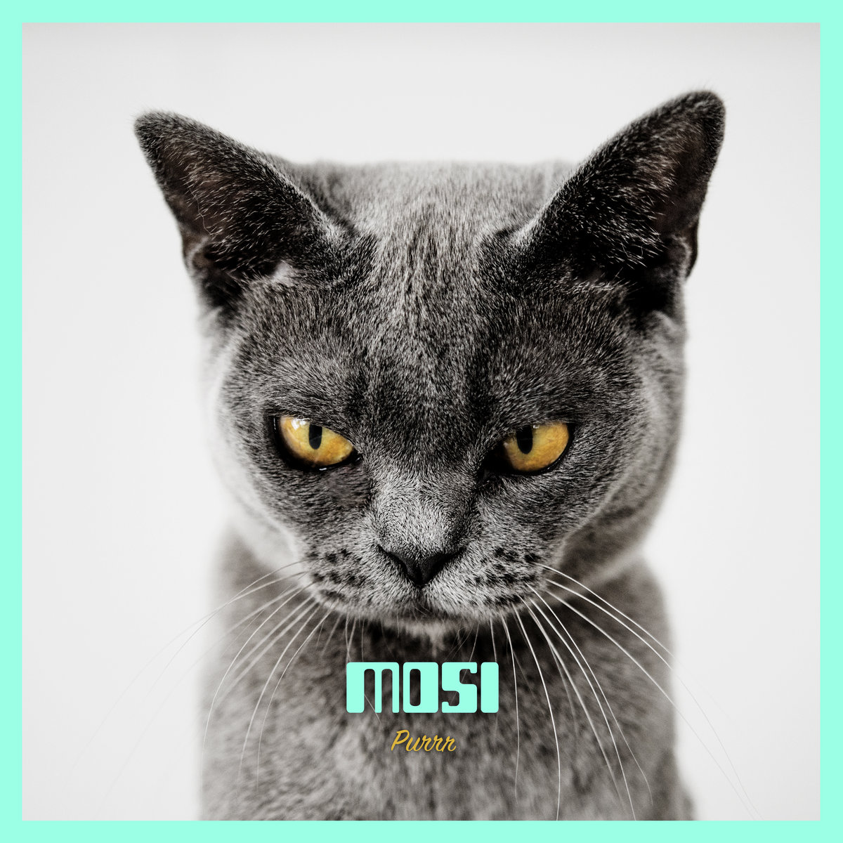 Purrr by Mosi