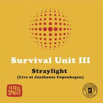 Straylight (Live at Jazzhouse Copenhagen) cover art