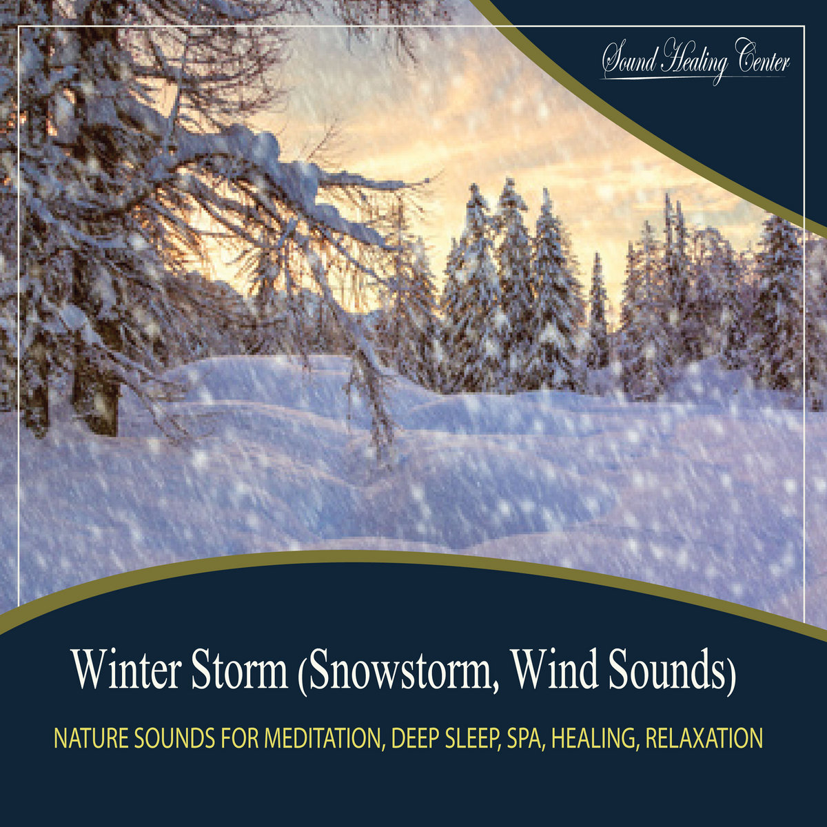 Winter Storm Snowstorm, Wind Sounds Nature Sounds for