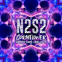 N2S2 cover art