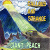 Callous and Strange Cover Art