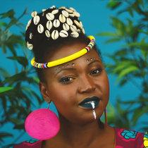 Bande de Bangui cover art